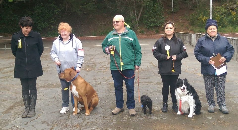 Lee (Judge), Heather & Yogi, John & Jenny,  Xie & Storm, Annette (Steward)